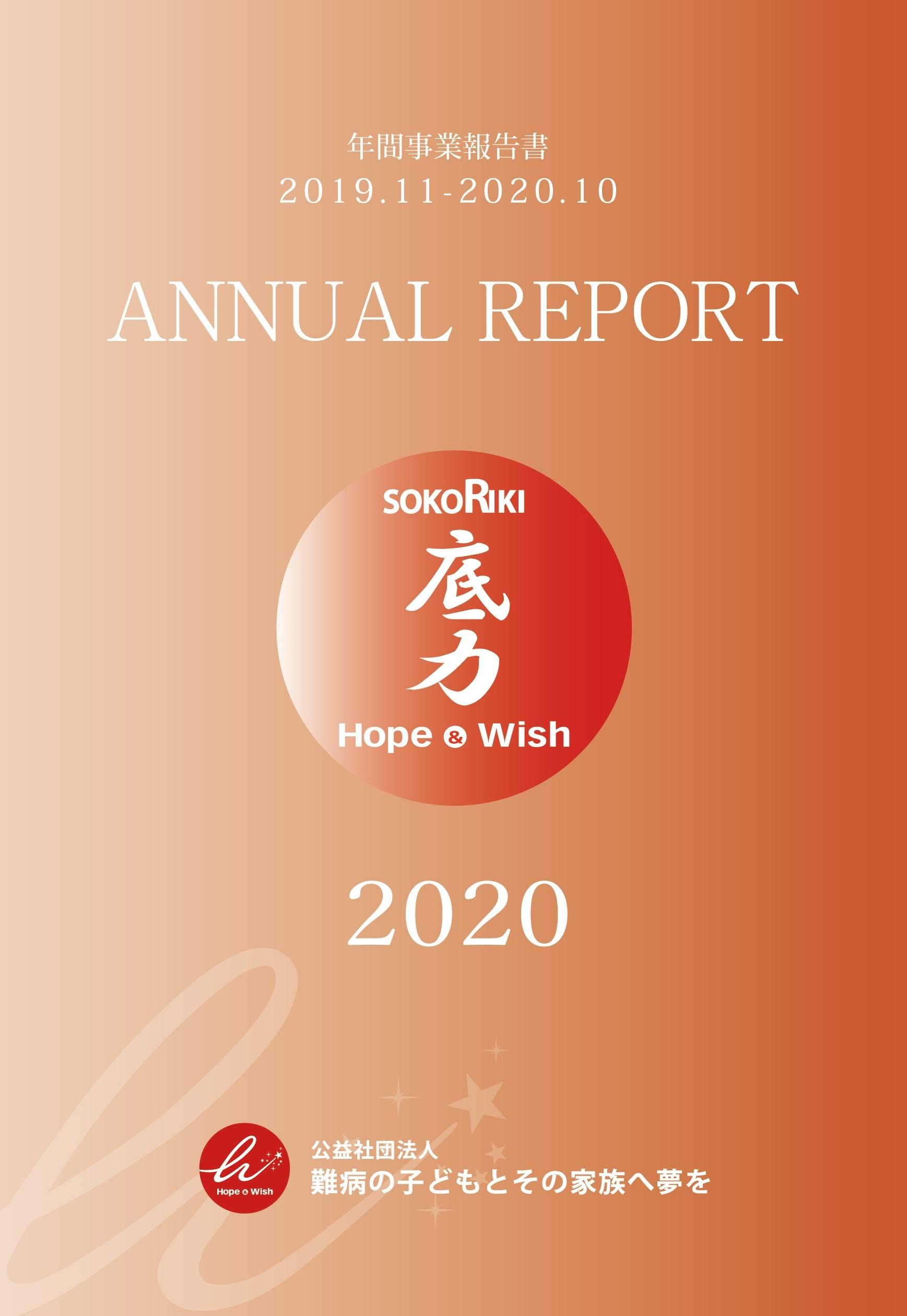 anual2017